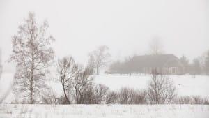 Paisaje nevado de Estonia