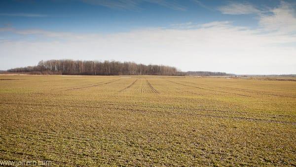campos de Liepaja en Letonia