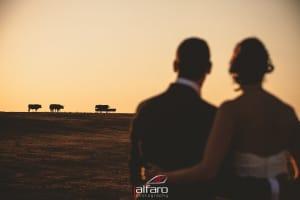 Fotografos de bodas Alicante