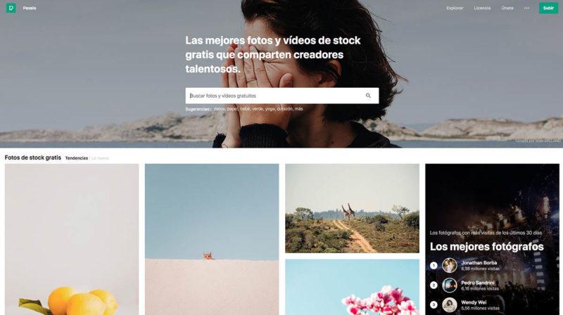 Fotografías gratuitas y vídeos de stock - Pexels