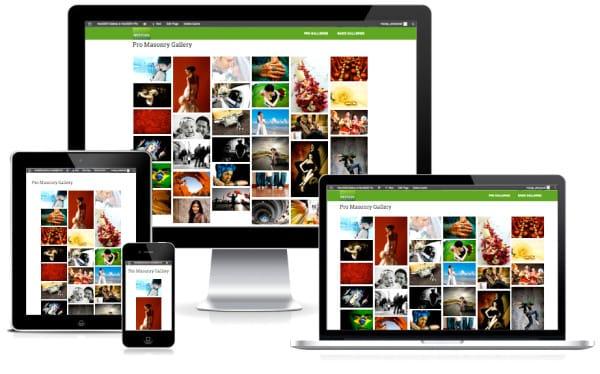 NextGEN Gallery Plus