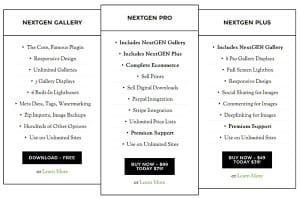 NextGEN Gallery Plus (II)